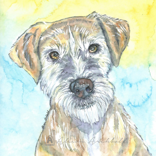 Greeting Card Dog Benji