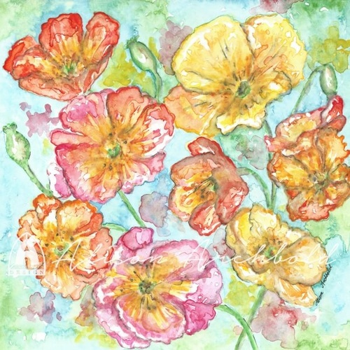 Greeting Card Garden Pink and Yellow Poppies